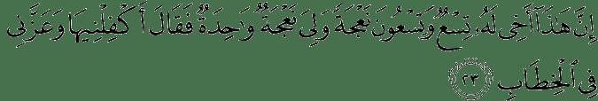 Surat Shaad Ayat 23