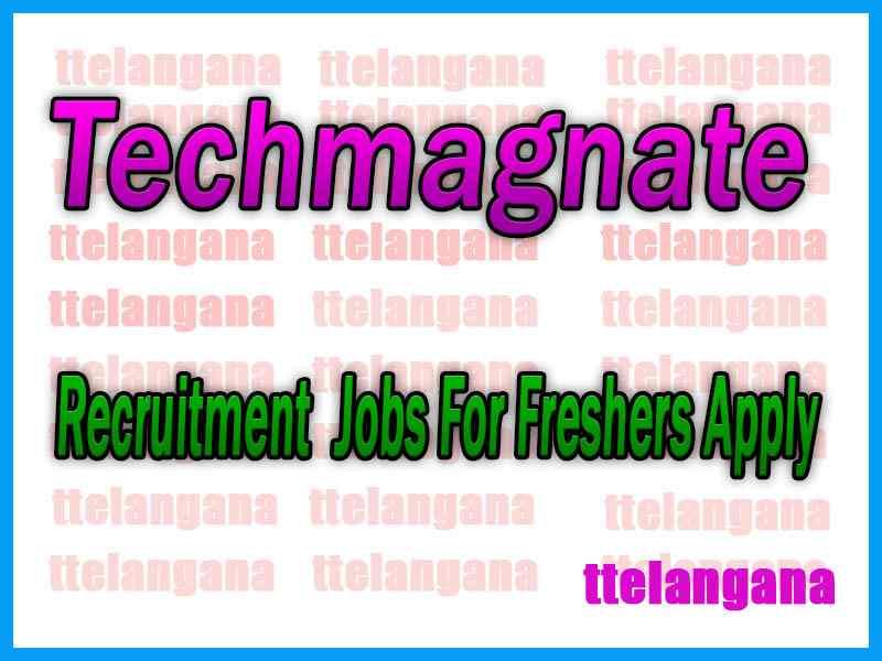 Techmagnate Recruitment  Jobs For Freshers Apply