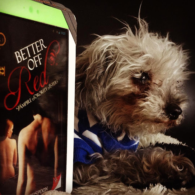 Murchie lies in three quarter profile on a cow-shaped pillow. He wears a blue and white striped t-shirt and has his paws crossed in front of him. Upright beside him is a white Kobo with the cover of Better Off Red on its screen. The black cover features two women seated with their backs to the viewer: a dark-haired Latino lady in the foreground and a red-haired white lady in the background.