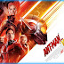 Download Film Ant-Man and the Wasp (2018) Subtitle Indonesia