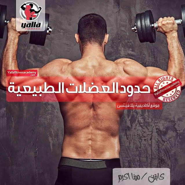 ما هو مقدار العضلات التي يمكنك اكتسابها بشكل طبيعي !؟