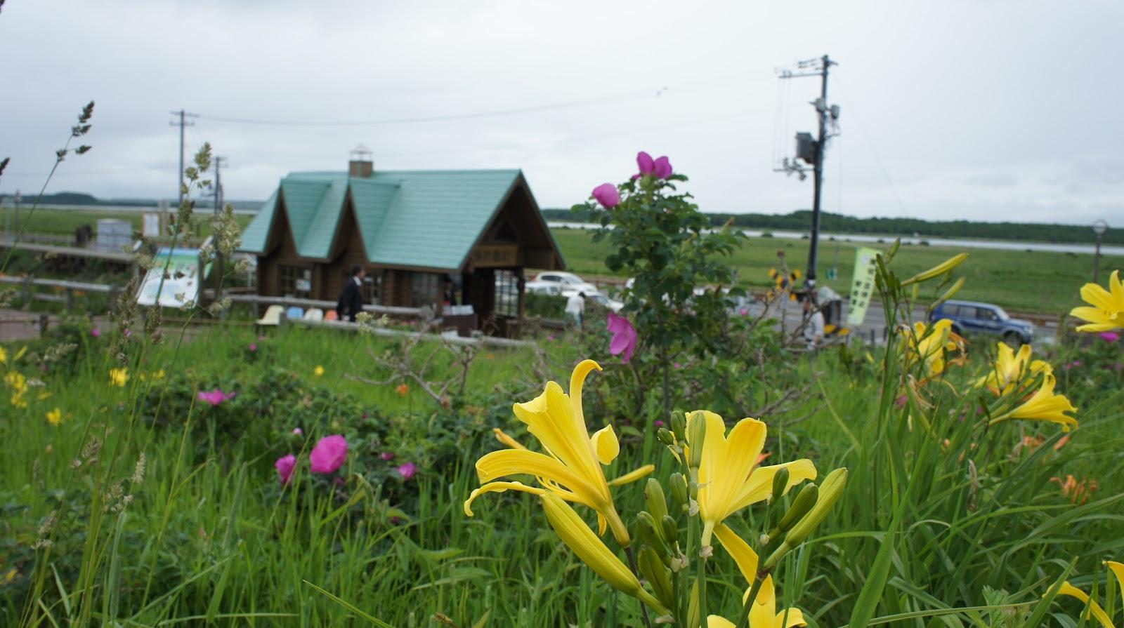 Enjoy-Now2 一起享受當下!: 北海道露營紀事 Hokkaido Camping day5 - 也太自然了吧! @知床野營場