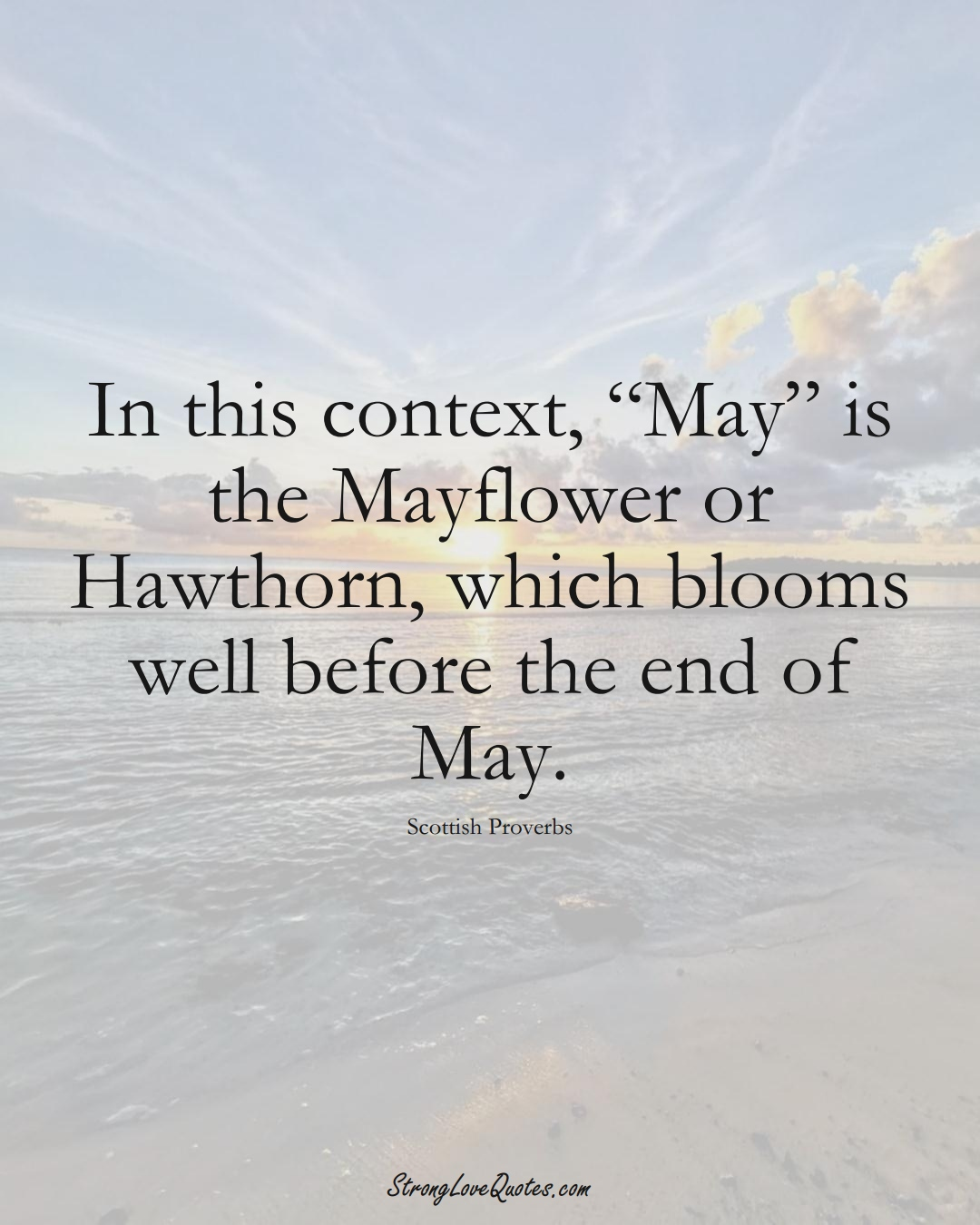 """In this context, """"May"""" is the Mayflower or Hawthorn, which blooms well before the end of May. (Scottish Sayings);  #EuropeanSayings"""
