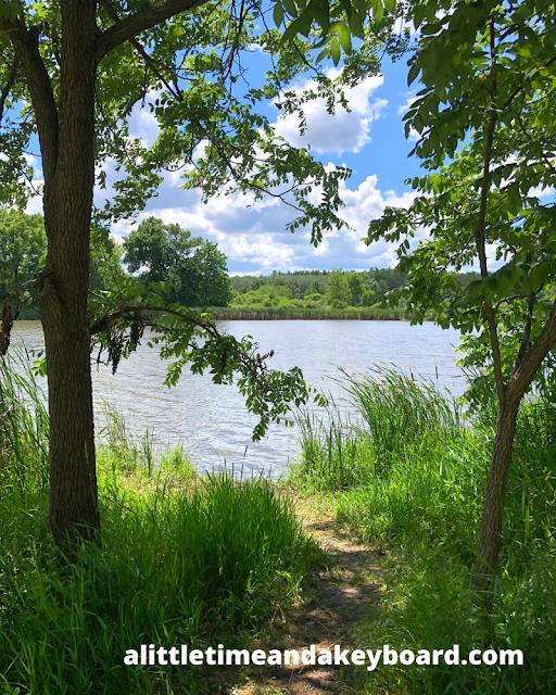 Peeking at the lake at McDonald Woods Forest Preserve.