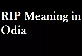RIP Odia Meaning rip Meaning in Oriya
