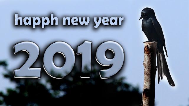 happy new year 2019 4k