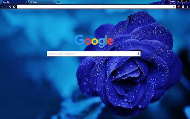 Blue Rose Google Theme