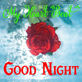 new good night Images%2B100