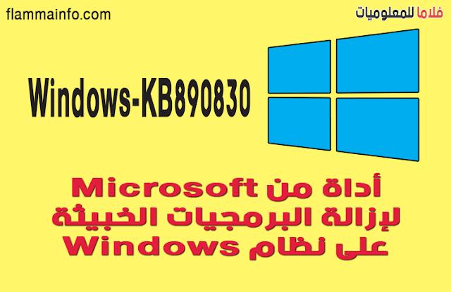 Windows-KB890830