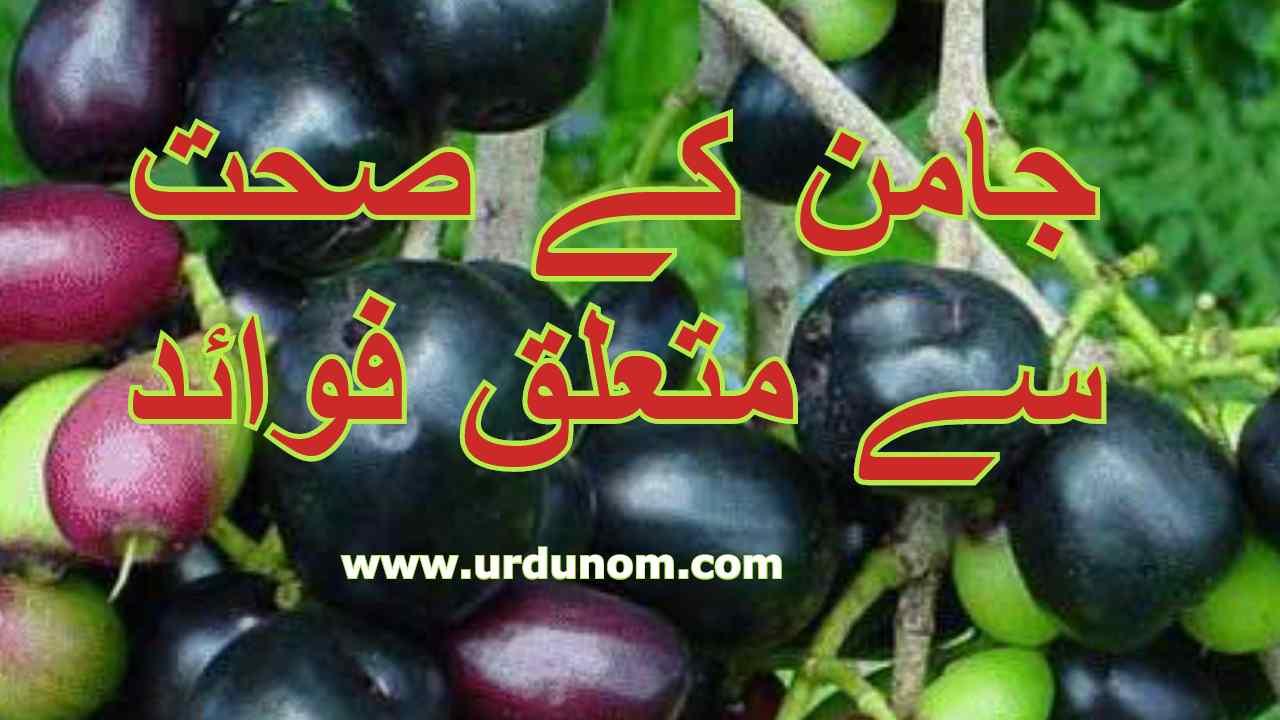 جامن کے صحت سے متعلق فوائد   health benefits of jamun