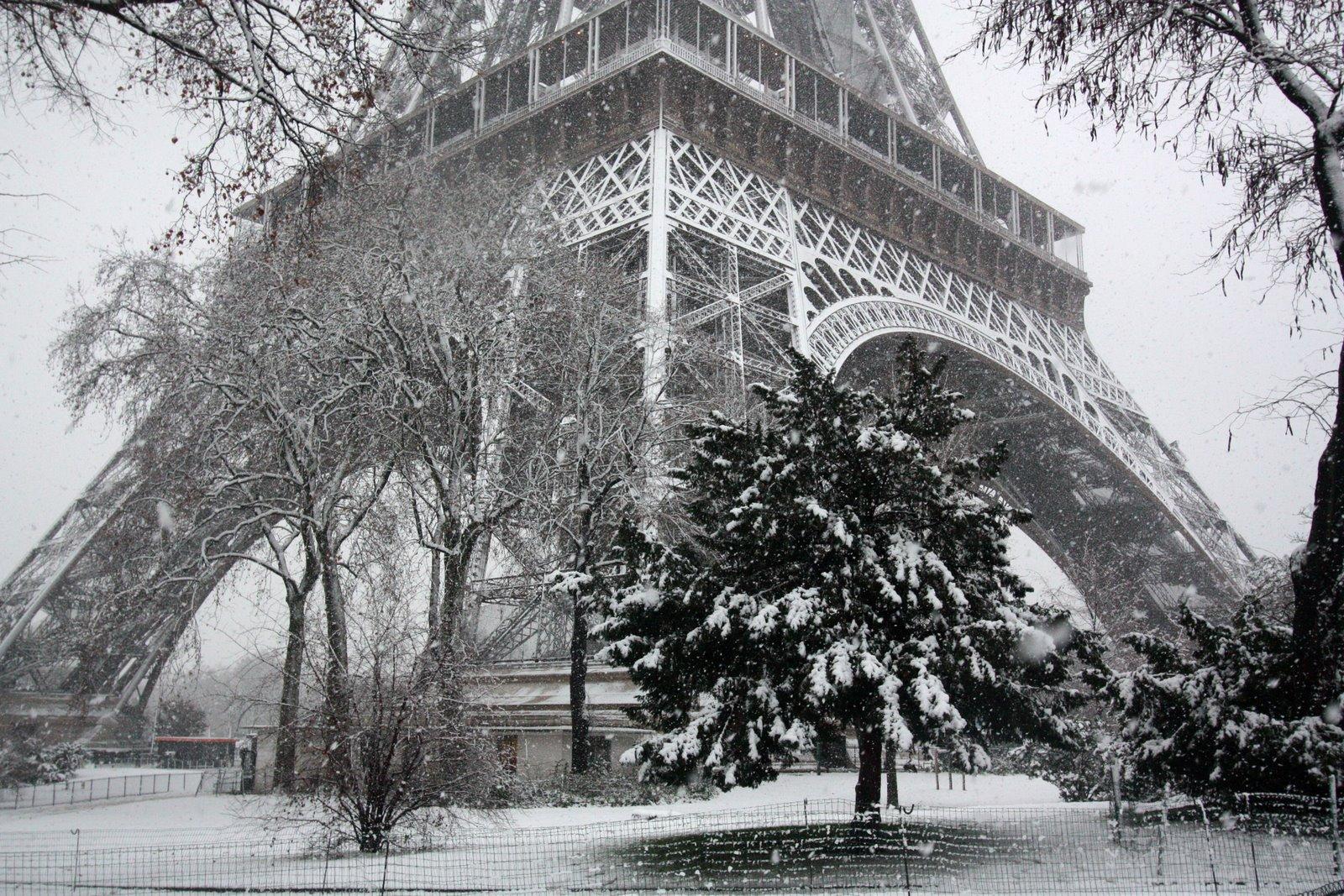 Paris: Paris Winter