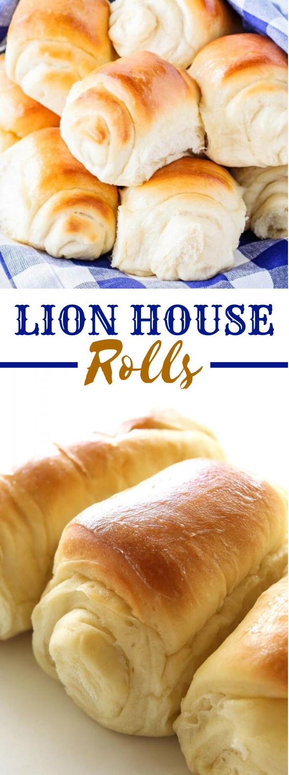 LION HOUSE ROLLS #thanksgiving #dinner