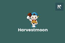 Cara Download dan Install Harvest Moon: Back to Nature Bahasa Indonesia