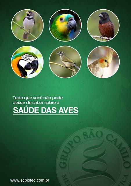 Saúde das Aves - SCBIOTEC