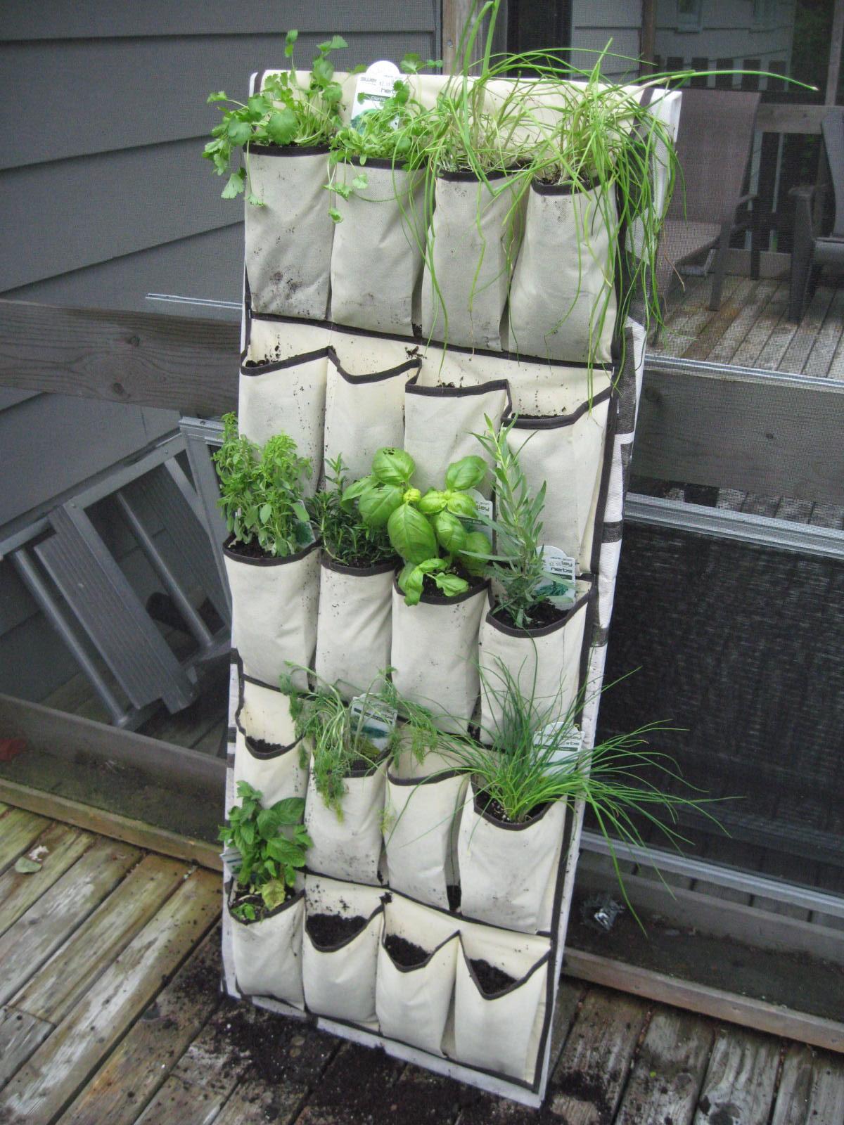 Becoming mommy hanging herb garden - Jardin vertical en casa ...