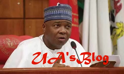 We Are Feeling Earth Tremors In Abuja For Past 48 Hours – Saraki