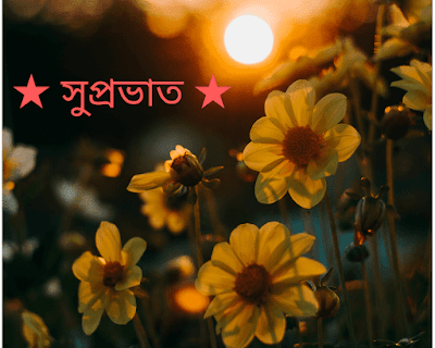 Bengali Good morning flower Images