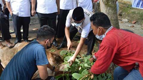 penyembelihan hewan kurban di Masjid Ukhuwah Balaikota Padang