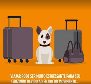 Fotos: Divulgação/Zoetis