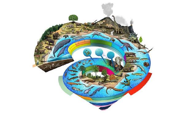 El Tiempo Geológico es la forma en que está dividido el tiempo de nuestro planeta, haciendo énfasis a los acontecimientos históricos importantes y de la vida.