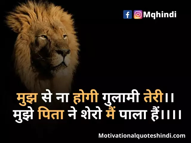 Lion Quotes in Hindi - Lion quotes, Morals quotes, Tiger quotes