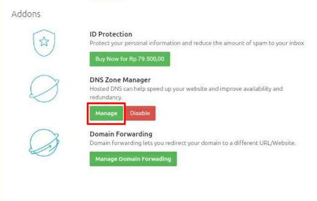 DNS Manager Domainesia
