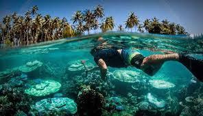 pesona alam bawah laut nias island