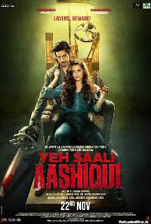 Yeh Saali Aashiqui 2019 Hindi Movie