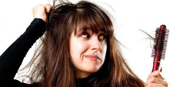 www.Ada 15 Bahan Alami Yang Sangat Ampuh Untuk Mengatasi Rambut Rontok