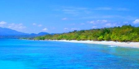 Taman Nasional Bali Barat taman nasional bali barat merupakan pusat penangkaran taman nasional bali barat kabupaten buleleng bali