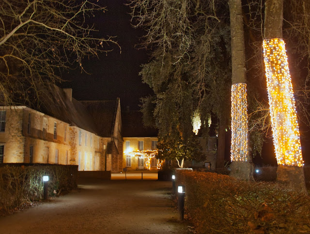 jiemve, Abbaye, Epau, lumières, illuminations, allée