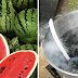 Why You Should Never Throw Away Watermelon Seeds