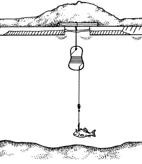 Зимняя жерлица для пассивной ловли