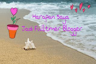 Fulltimer blogger