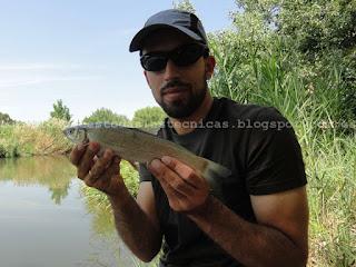 Pesca con pan de molde