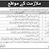 PAEC Foundation Housing Lahore Jobs