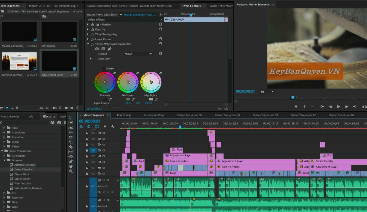 Video tiếng Việt hướng dẫn xử lý màu phim trong Adobe Premiere Pro .