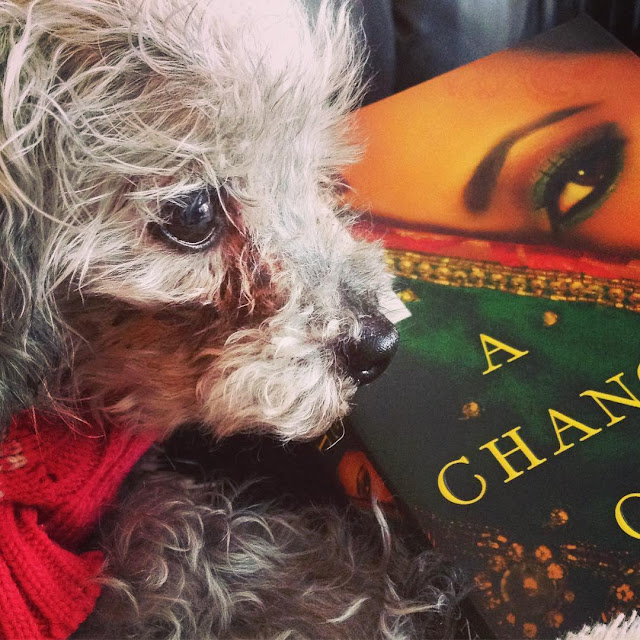 Murchie's face hovers over a trade paperback copy of A Change of Heart. Its cover features a Desi woman with a green sari drawn diagonally across her face so only one eye is visible.