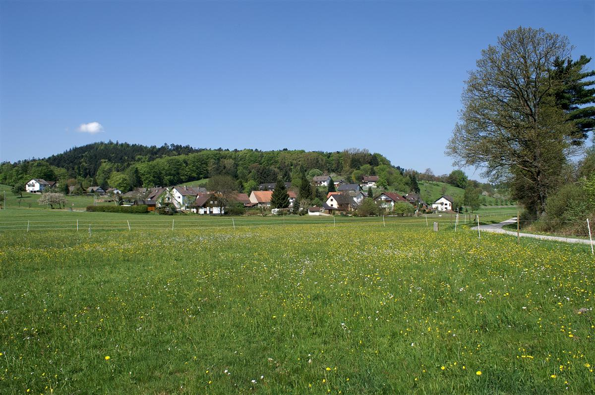 Germany The Black Forest