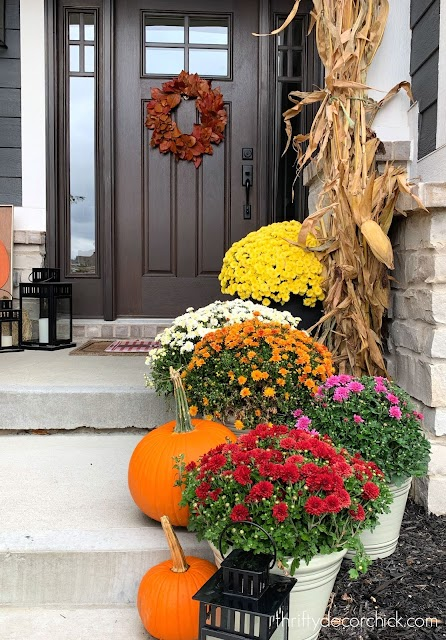 colorful mums and corn stalks front porch