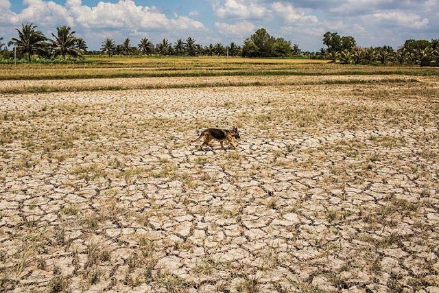 Các con đập tại Trung Quốc vẫn giữ lại nước trong đợt hạn hán trầm trọng tại hạ nguồn sông Mekong