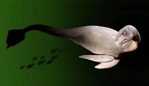 Altamaha-ha efsanevi yaratık