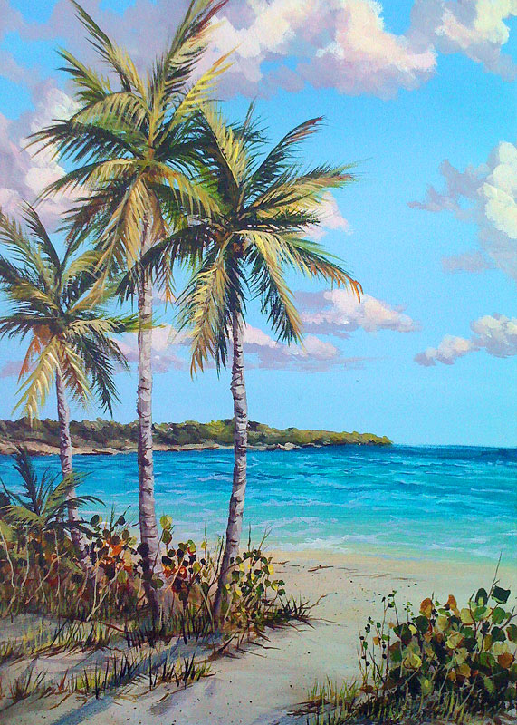 Vieques Island Paintings By Nancy Hogan Armour