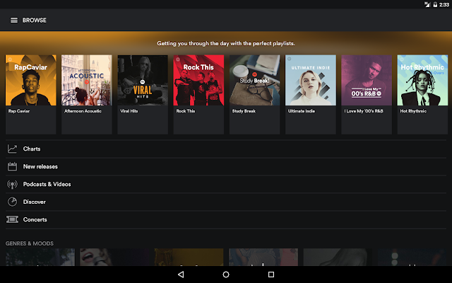 Spotify Screenshot 01