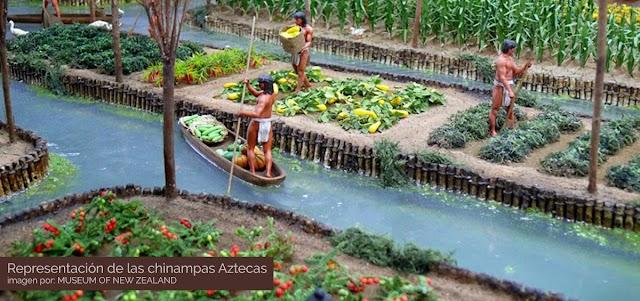 Las Chinampas: Agricultura ancestral en México