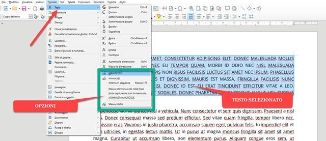 trasformare testo in libre office