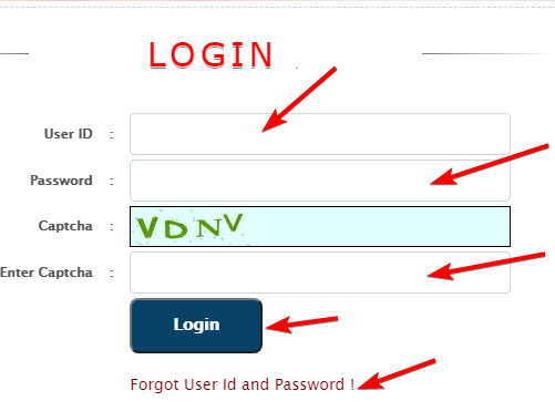 login-using-your-user-id-and-password
