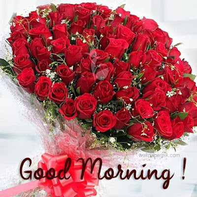 beautiful good morning images new best good morning images new wallpaper download