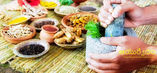ఆయుర్వేదంలో చర్మవ్యాధులు వాటి మూలాలు మరియు చికిత్స - Ayurveda Treatment for Skin Diseases