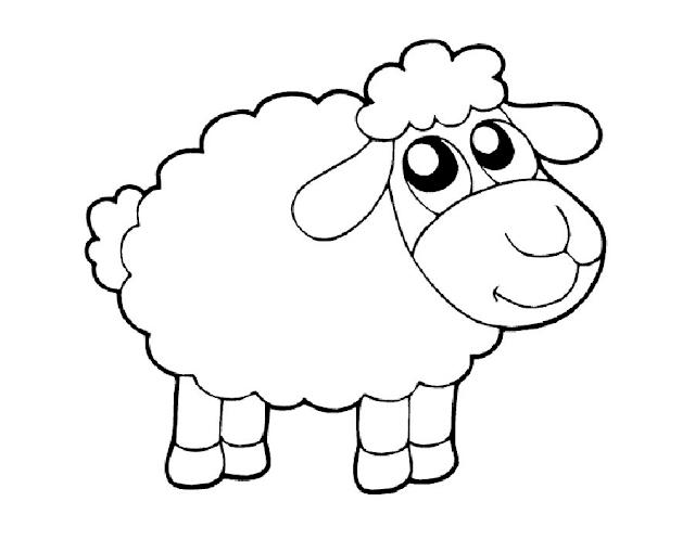Gambar Mewarnai Domba Untuk Anak Paud Dan Tk Mewarnai Gambar